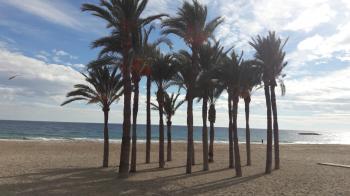 Alicante - pronájem - 4