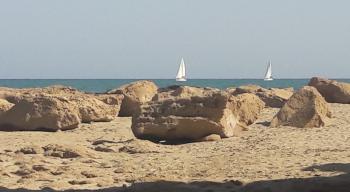 Alicante - pronájem - 5