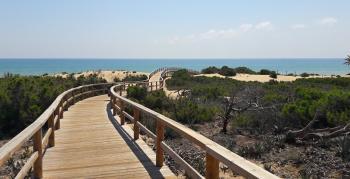 Alicante - pronájem - 6