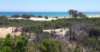Alicante - pronájem - 7