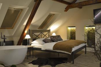 pokoj 107 Chamonix 1