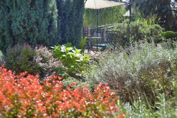Zahrada Via Ironia - 4